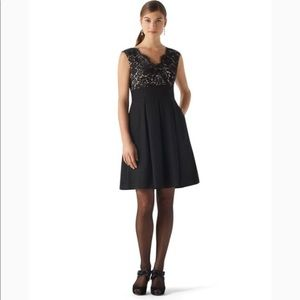 NWT WHBM Lace Bodice Faille Dress